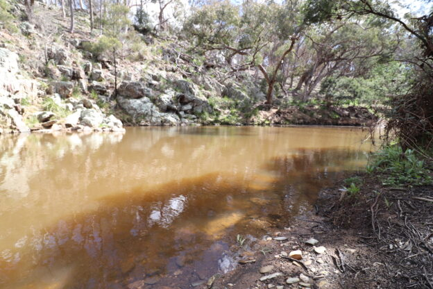 Land for sale in Gundaroo NSW